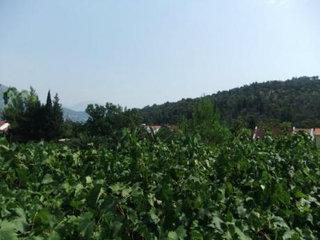 В Черногорию – «дикарями»