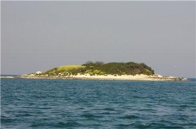 Путешествие на необитаемый остров