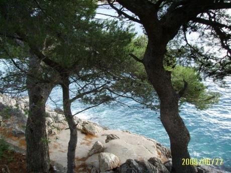 Поездка в Дубровник, Хорватия