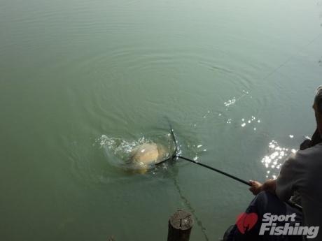 как ловить рыбу утром или вечером