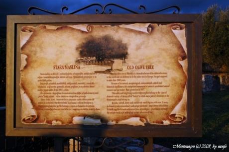 Черногория. Часть 13. Утро - Свети-Стефан - Петровац - Бар
