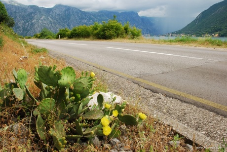 Мультиспортивное путешествие по Черногории. Часть 1.