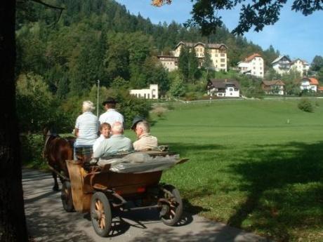 Циммеры Словении