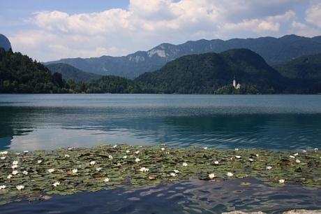 Как загадать в Словении желание :)