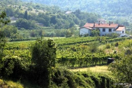 Словения-Хорватия - 3