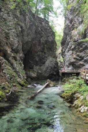 Ущелье Винтгар. Словения.