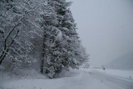 Словения. Зима на Гореньском.