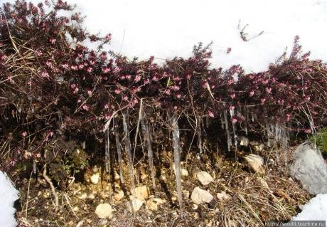 Февральские краски Юлийских Альп