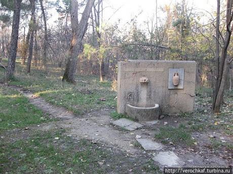 Большой Парк Тираны