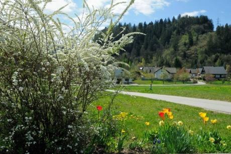 Весна 2012