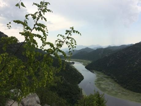Сигизмунд, Белуга и Авось (часть 1 и 2)