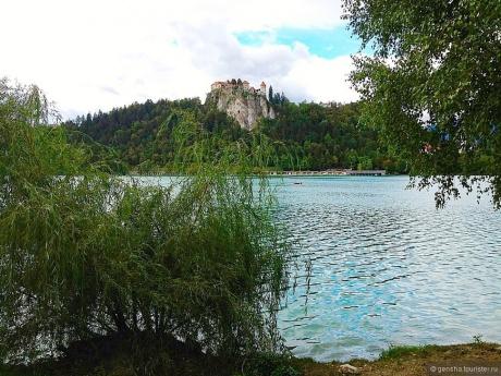 Гусиной походкой вокруг озера Блед
