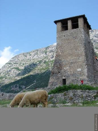 Албания 2013.