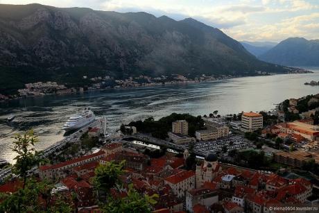 «…Жаль, Черногория не стала второю родиной моей!»
