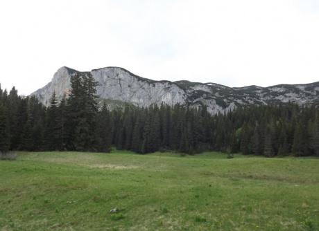 Черногория: курортная и не очень. День 7 - Озеро Яблан.