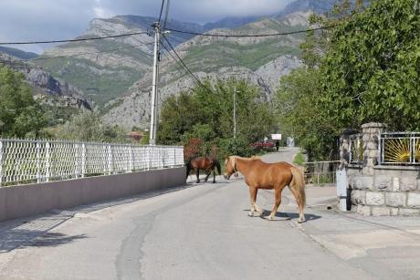 Часть 1. Черногория для активных туристов. Апрель-май 2017