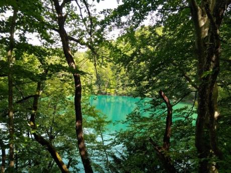 Загреб, Плитвицкие озера, Далмация и острова общественным транспортом