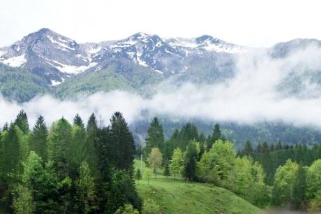 Майские выходные в Словении: море, горы, озёра, замки... Часть 8.