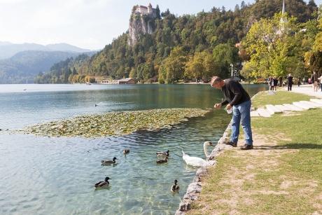 Жемчужина Словении
