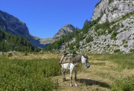 Албания — необычная европейская страна
