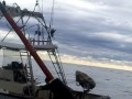 Будва, рыбалка